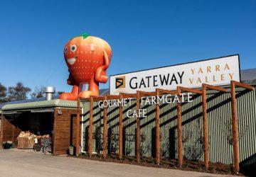 gateway estate gecko